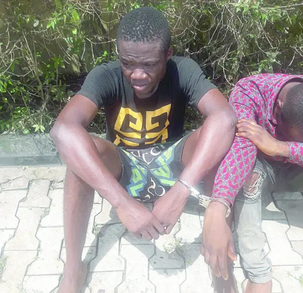 We targeted secondary school girls for marathon sex —Suspected cultist/rapist