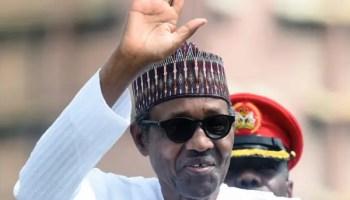 Buhari, army, Nigeria, D'Tigress