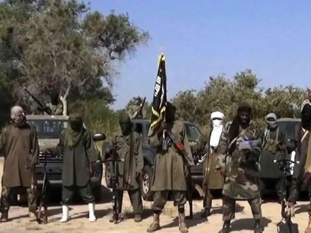Insurgents in Nigeria