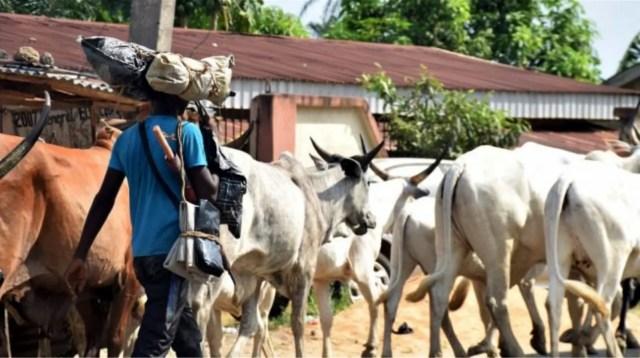 Herdsmen, insecurity