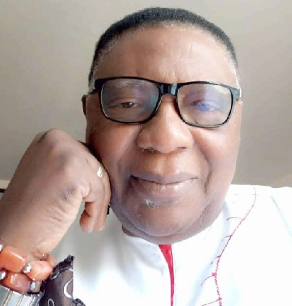 IPOB: You are uncivilised Igbo, President Emeritus of Aka Ikenga mocks Ekweremadu attackers
