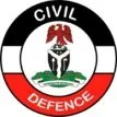 NSCDC arrests suspected vandal in Ogun