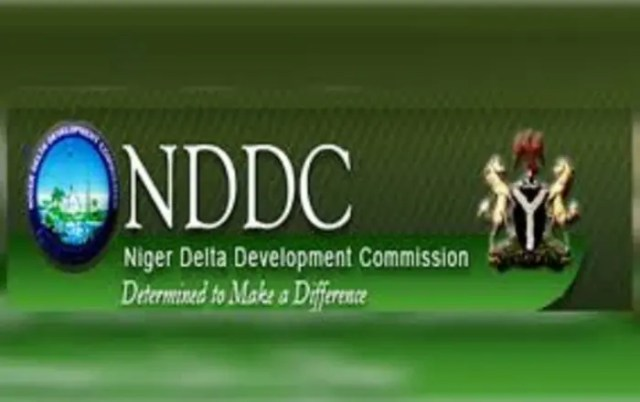 Niger Delta leaders back Buhari on NDDC audit