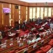 Senate urges DPR to enforce ban on illegal cooking gas retailers