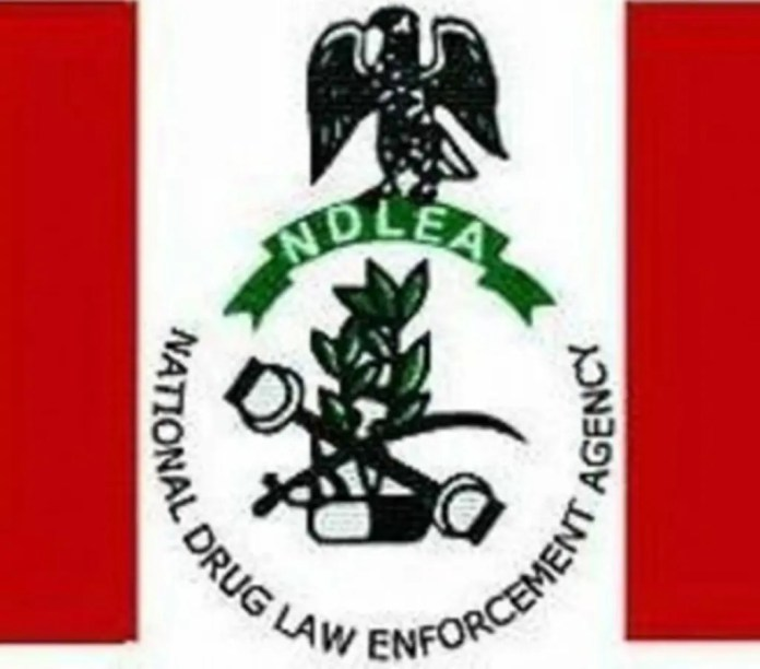 NDLEA nabs wanted Abia major drug supplier with over 100kg cocaine, cannabis