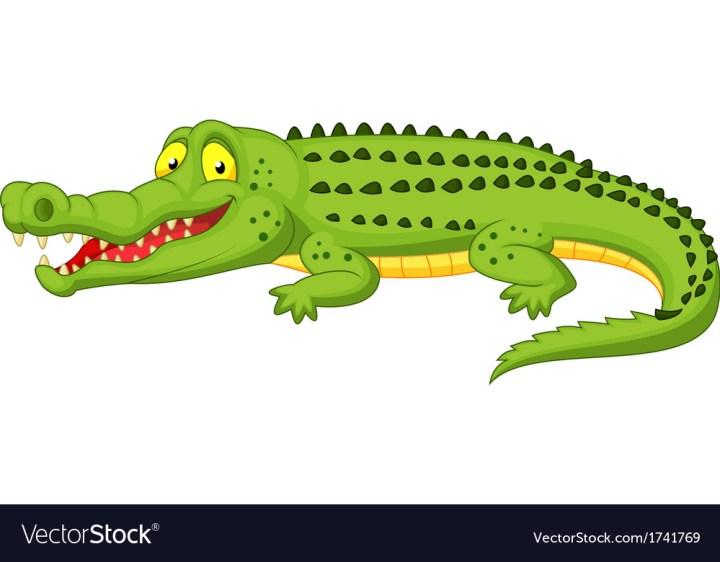Cartoon Crocodile Pictures | cartoon.ankaperla.com - photo#12