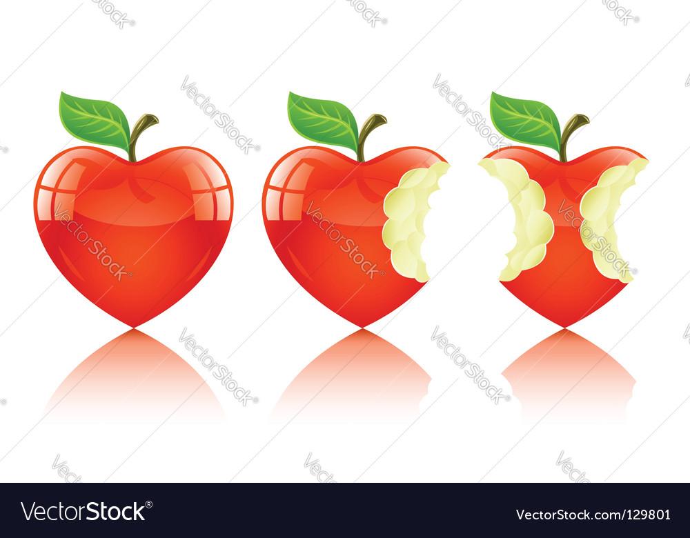 Download Love heart apple Royalty Free Vector Image - VectorStock