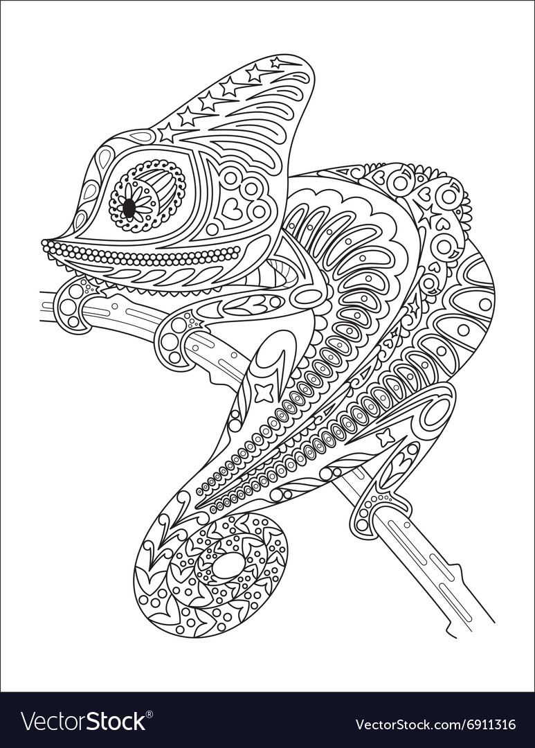 monochrome chameleon coloring page black over vector by vectoramac