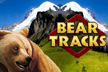 Bear tracks cover