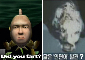 Real Life Seaman Created By Korean Scientists Yes Really