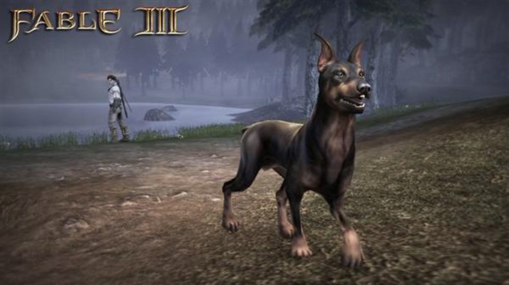 Fable 3 Dog Breeds DLC Gives Canine Variety For Christmas