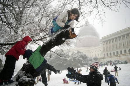 UNITED STATES - MARCH 05: Erin Johnson, 8, of Capitol Hill, hangs out in a tree on the west front lawn of the Capitol during a snow storm, March 5, 2015. (Photo By Tom Williams/CQ Roll Call)