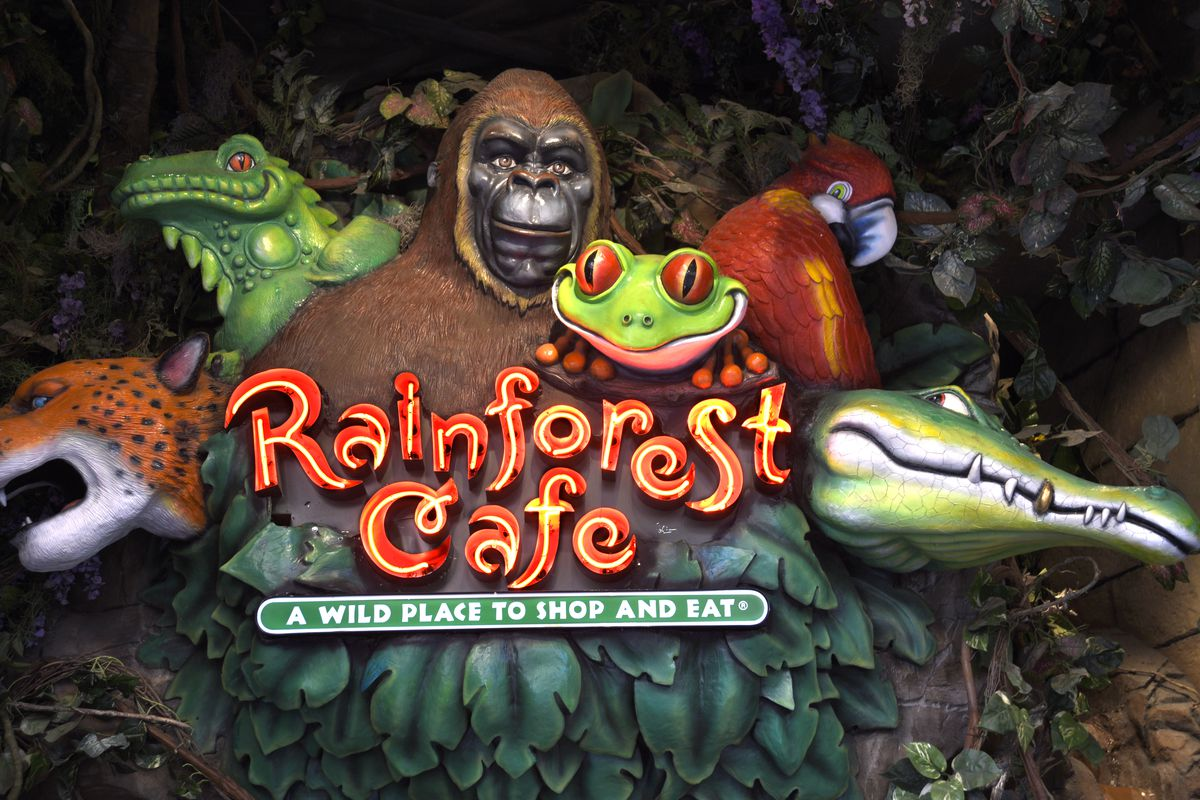 Image result for rainforest cafe
