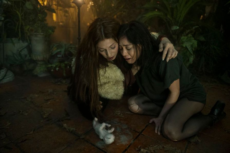 Lisa N. Nova and the witch Boro kneel over a kitten Lisa has just barfet in Netflix brand new cherry flavors.