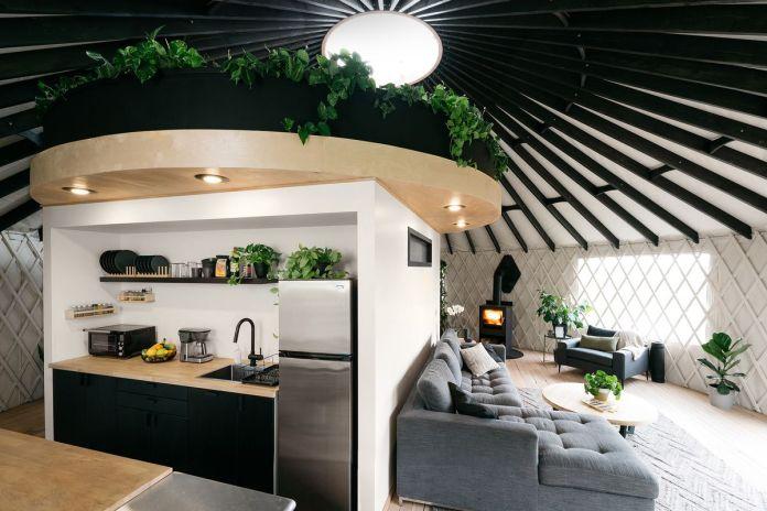 Современная юрта - это оазис, наполненный растениями