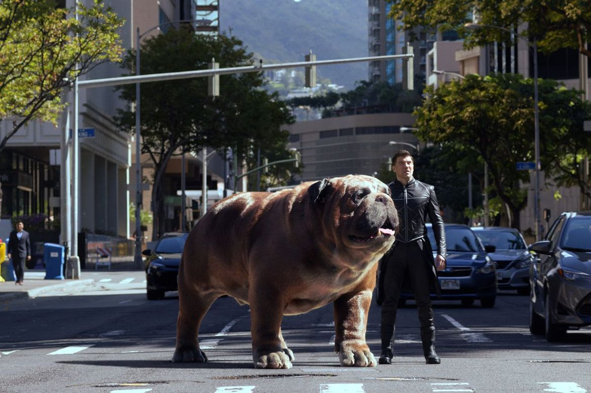 A big dog and an inhuman stand in the middle of a busy city street