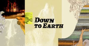 Down to Earth, a new Vox project on the biodiversity crisis