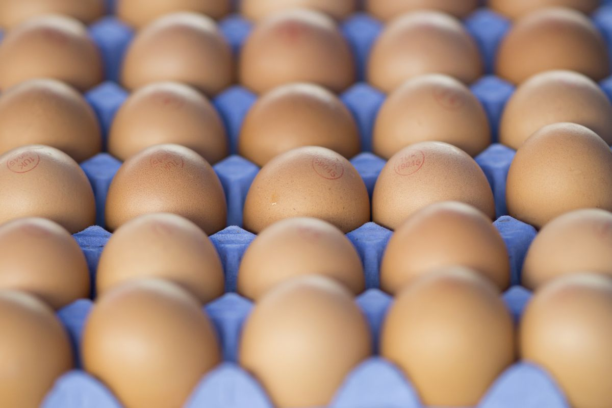 Best Ways to Test For Freshness of Eggs You Need To Know in 2020