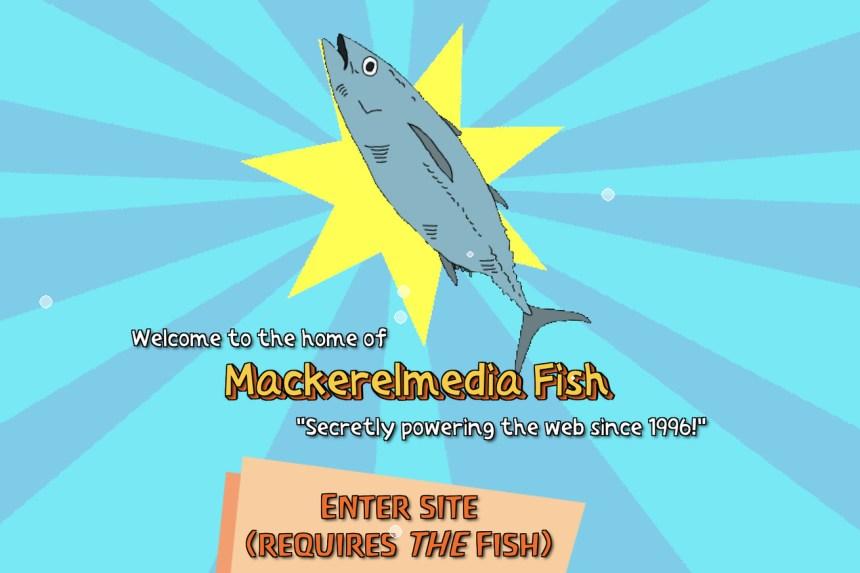 Mackerelmedia Fish splash screen