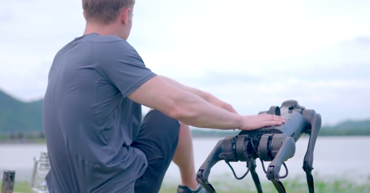 This ,700 robot dog will carry a single bottle of water for you