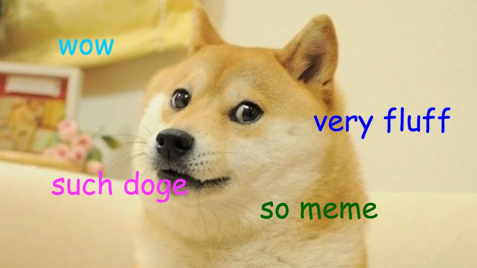 Doggos And Floofs How The Internet Changes English