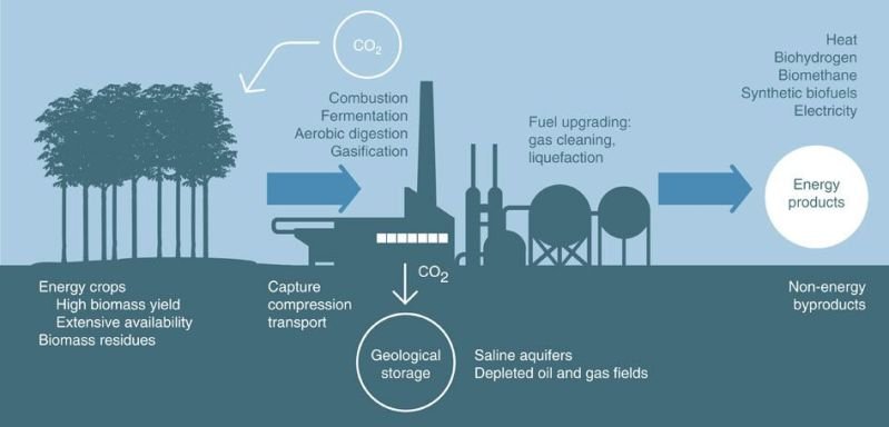 A schematic of how bioenergy with carbon capture and sequestration (BECCS) leads to negative emissions.