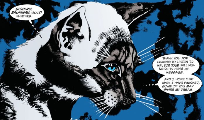 "The Siamese Cat speaks to an assembly of cats. ""Sisters. Brothers. Good hunting. Thank you for coming to listen to me; for your willingness to hear my message. And I hope that when I have finished, some of you may share my dream,"" in The Sandman, DC Comics (1989)."