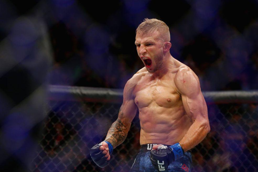 Image result for tj dillashaw