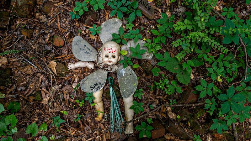 """Résultat de recherche d'images pour """"doll's head trail"""""""