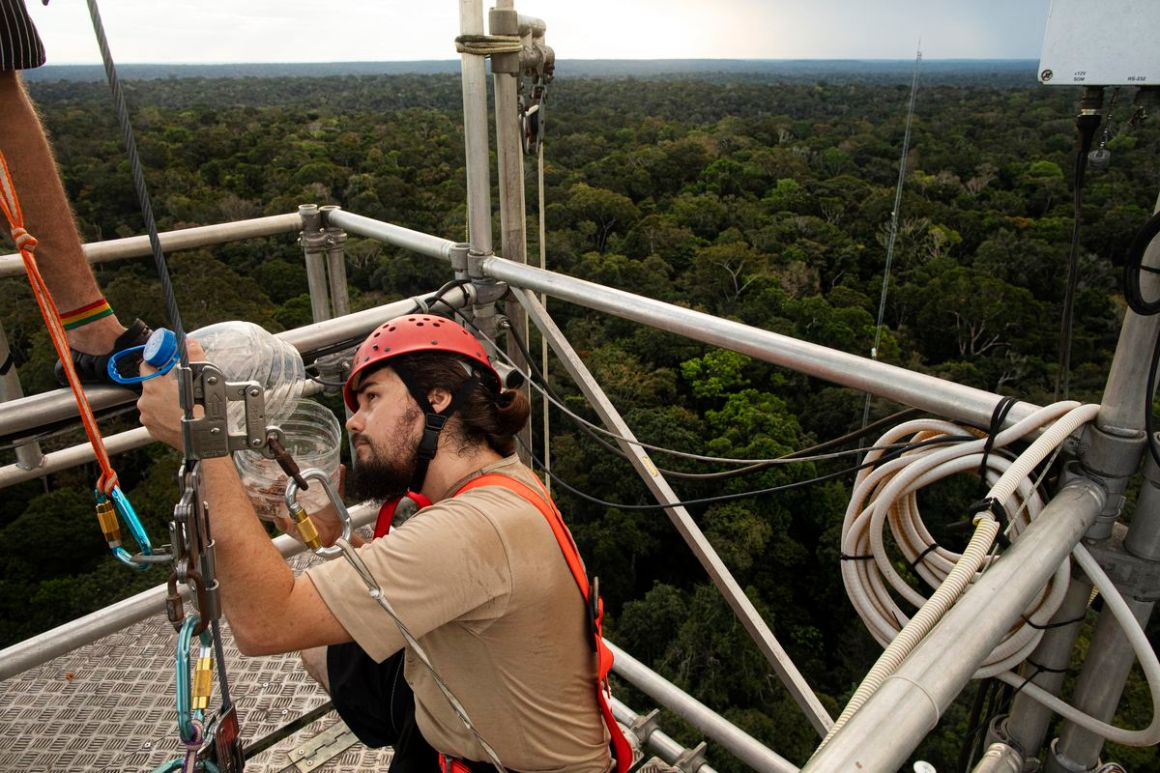 Researcher Layon Demarchi works on top of the 80-meter tower near the main tower at ATTO.