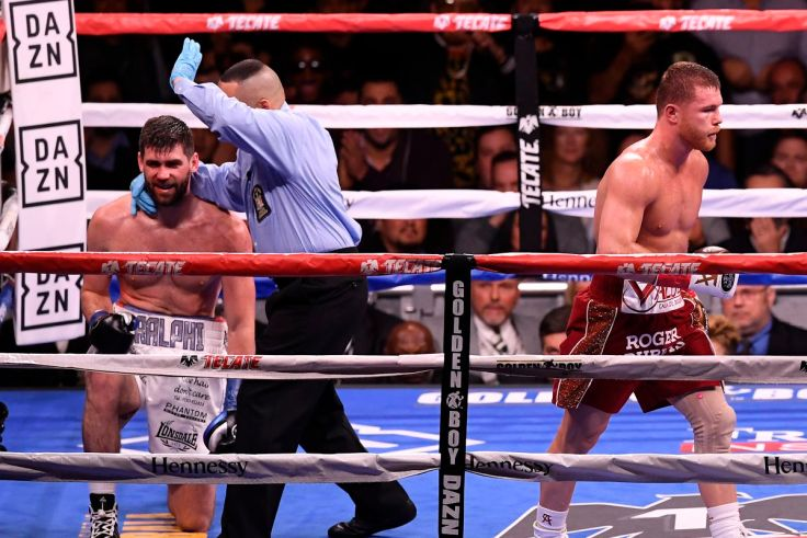 Image result for canelo