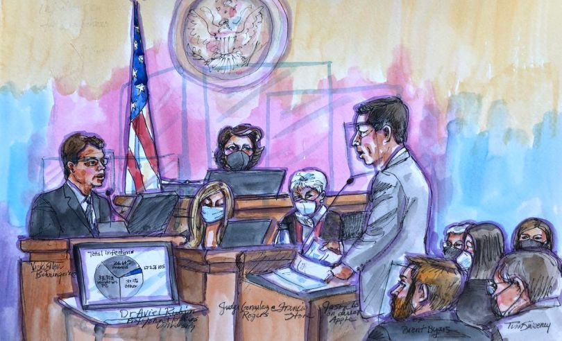 An expert witness addresses the court, and a pie chart detailing malware infection data is displayed in the lower left-hand corner of the drawing.
