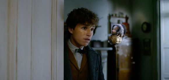 Fantastic Beasts: The Crimes of Grindelwald - Newt Scamander looking at a Niffler
