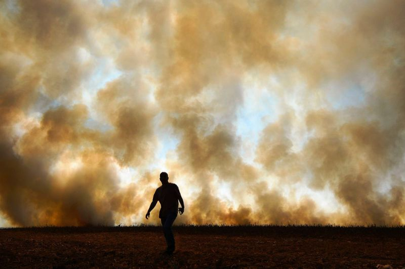 Smoke rises from an illegally lit fire on a cornfield in Brazil's Mato Grosso state