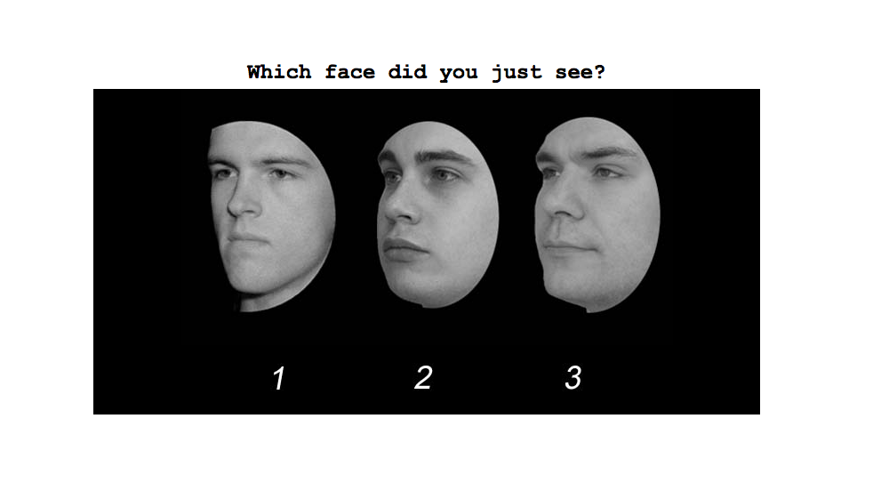 Take This Test To Find Out How Talented You Are At Recognizing Faces The Verge