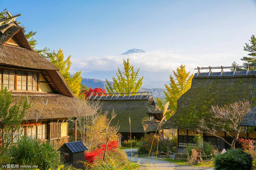 [東京近郊自由行]河口湖富士山箱根高尾山自駕自由行行程總覽及總花費Tokyo、Kawaguchiko、Fuji、Hakone、Takao