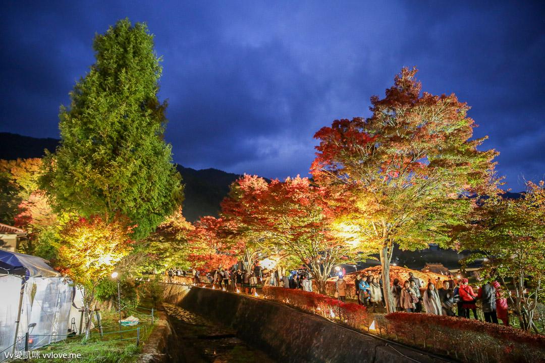 tokyo-travel-9224