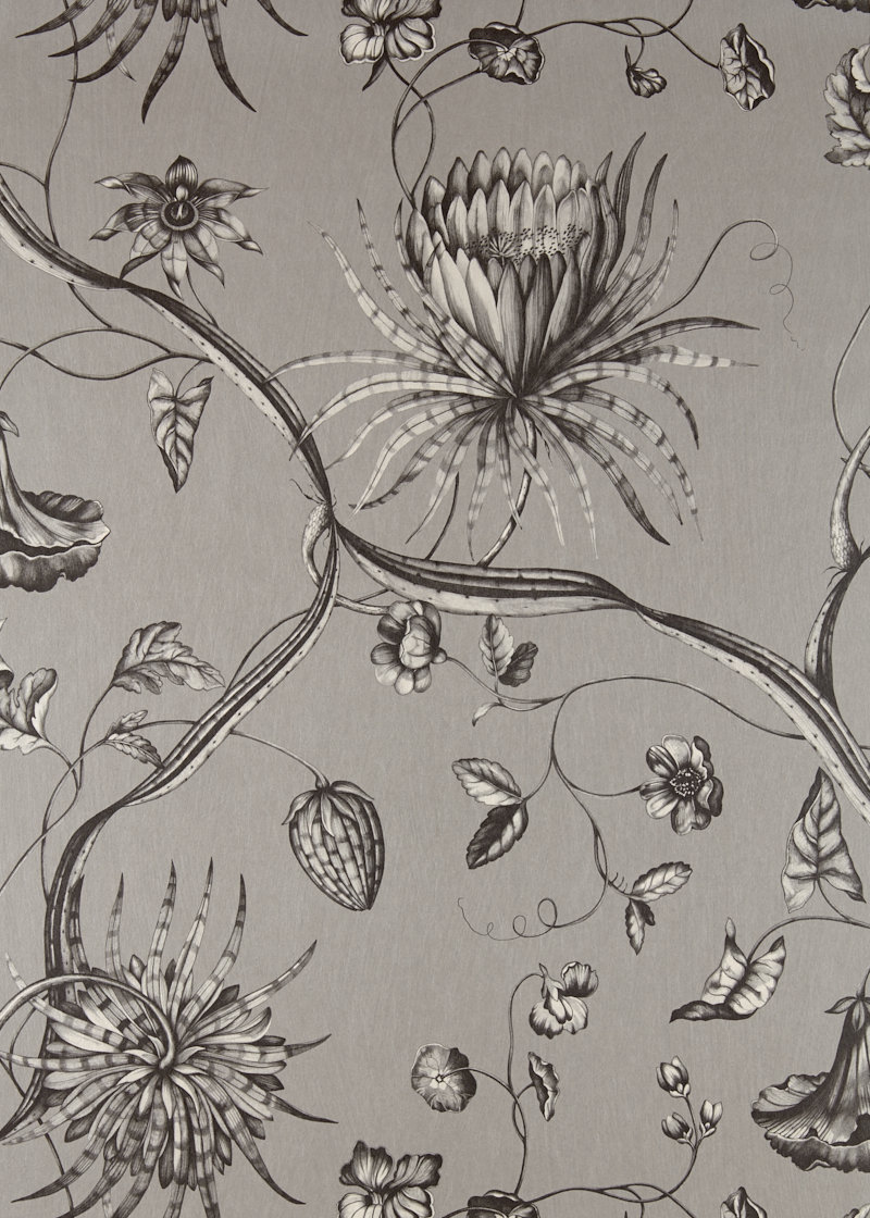 Phaedra By Zoffany Silver Wallpaper Direct