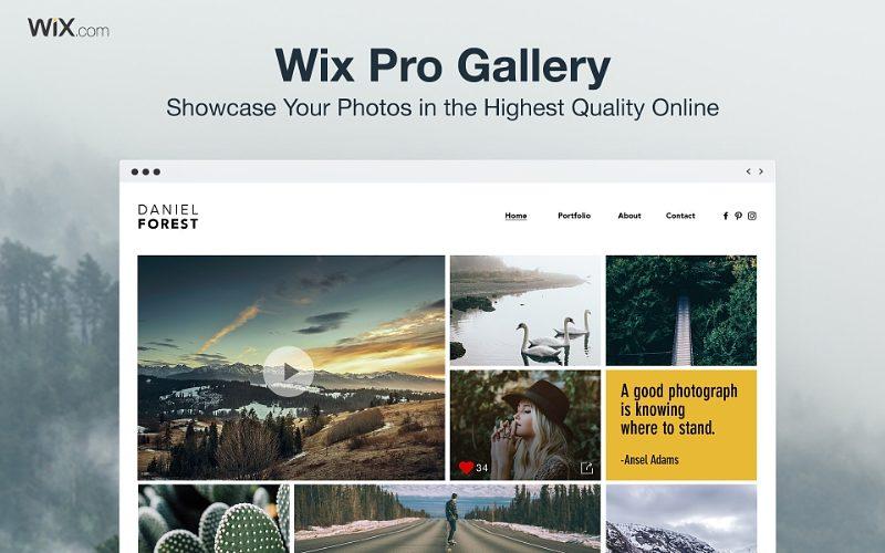 Wix lanza Pro Gallery y se asocia con Condé Nast en una iniciativa para apoyar a los fotógrafos emergentes - wix-pro-gallery3-800x500