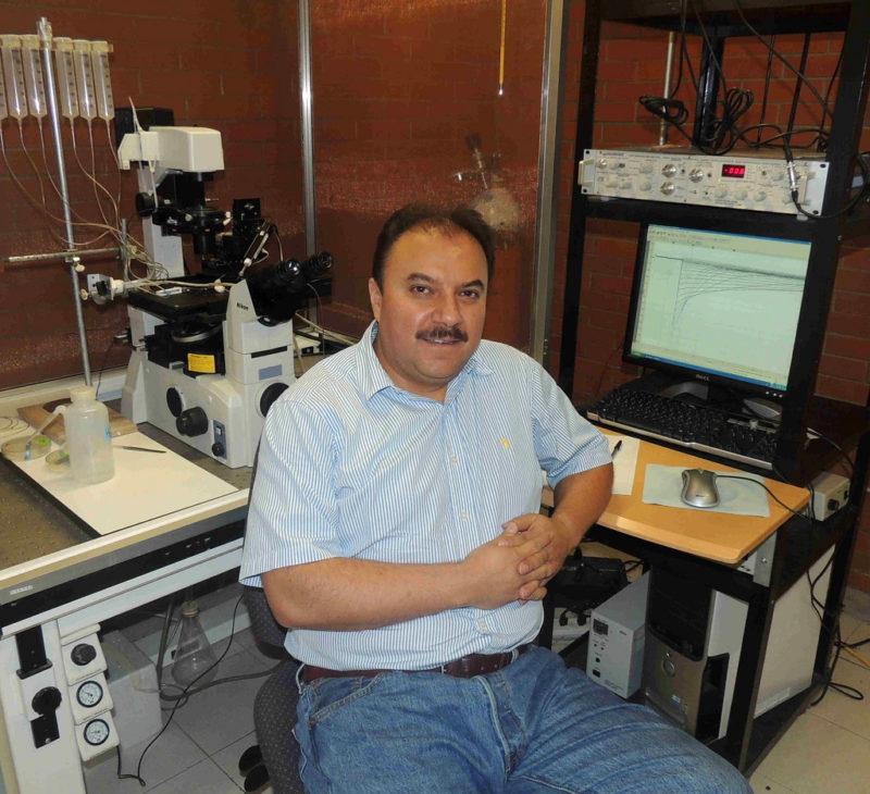 Universitarios desarrollan estrategia molecular para controlar el cáncer cervicouterino - estrategia-molecular-800x730
