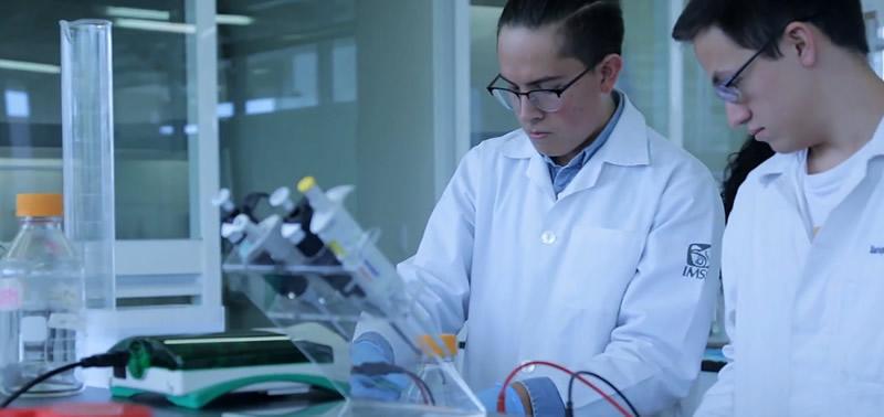 Desinfectante antibacterial hecho en México logra reconocimiento internacional - desinfectante-antibacterial-mexicano