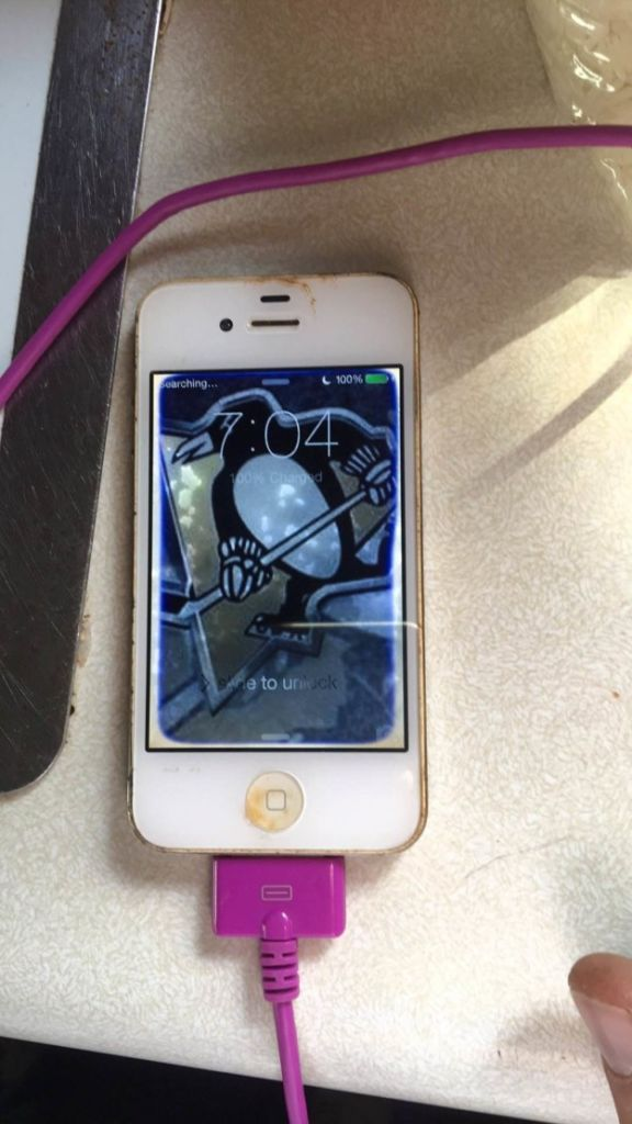 iPhone 4 sobrevive más de un año en el fondo de un lago - iphone-4-recovered