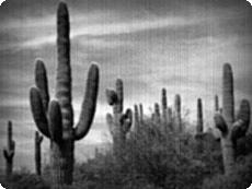 11 Tutoriales Para Lograr Efectos de Peliculas con Photoshop - oldmovie2