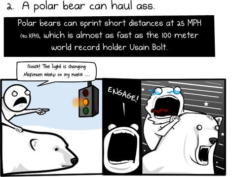 6 razones para montar un oso polar para trabajar 1 Seis razones para ir en Oso Polar al trabajo