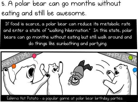 Seis razones para ir en Oso Polar al trabajo - 6-razones-para-montar-un-oso-polar-para-trabajar-4