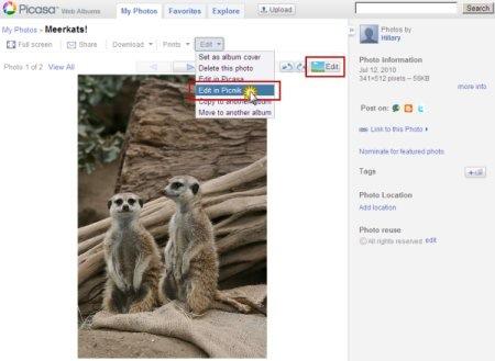 picasa web albums picnik Picnik se integra a Picasa Web Albums