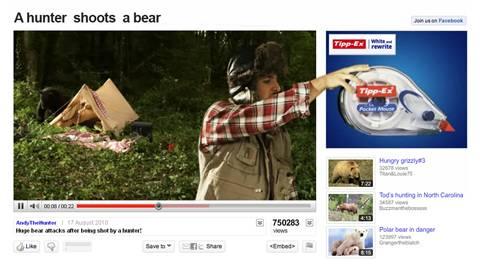 Hombre le dispara a un Oso [Video] - hunter-shoots-a-bear