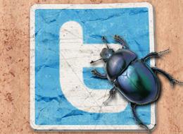 Joven Australiano causa caos en Twitter - twitter-bug