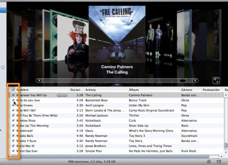 seleccionar canciones itunes Como sincronizar música específica en tu iPod