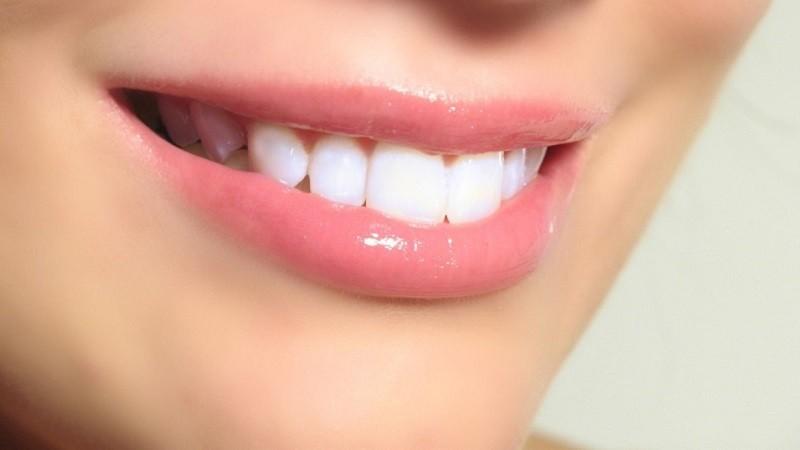 Dan primeros pasos en la regeneración de dientes humanos - dientes-800x450